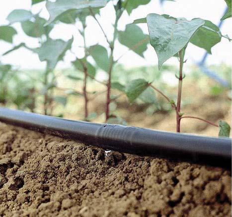 jain_irrigation